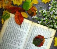 Öppna bok, höstblommor och sidor på en tabell Royaltyfri Fotografi