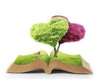 Öppna boken av naturen Royaltyfri Bild