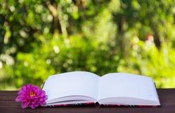 Öppna boken med tomma vita sidor på tabellen Öppna boken på en grön naturlig bakgrund Royaltyfria Bilder