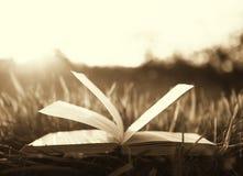 Öppna boken på gräs under solen Royaltyfri Bild