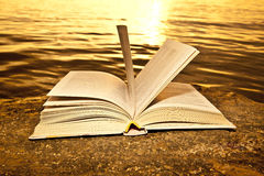 Öppna boken på stranden Royaltyfri Foto