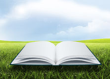 Öppna boken under solen Arkivbild