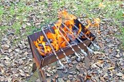 Öppna brand i gallret Meatless steknålar på gallret Kol bränner arkivfoto
