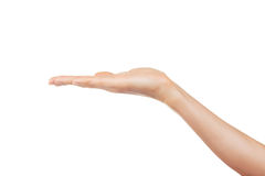 Öppna en kvinna hand Arkivbild