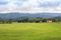 Öppna fält på norr Thailand Royaltyfri Fotografi