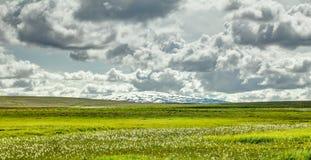 Öppna grässlätten med cloudscape- och sköldvulkan i bakgrund iceland fotografering för bildbyråer