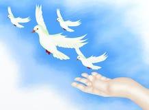 Öppna handen som frigör frihetsfågeln i klar blå Sky stock illustrationer