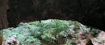 Öppna i en grotta på den Khao Sam Roi Yot nationalparken Arkivfoton