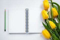 Öppna notepad, blyertspenna och gulingtulpan Arkivbild