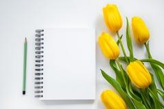 Öppna notepad, blyertspenna och gulingtulpan Royaltyfri Bild