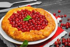 Öppna pajer som är syrliga med den röda vinbäret för bär Royaltyfria Bilder
