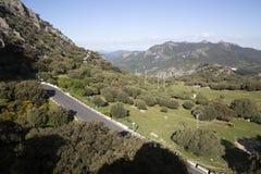 Öppna vägen i den Grazalema nationalparken Royaltyfria Foton