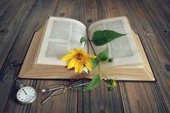 Öppnad gammal bok och blomma Royaltyfri Bild