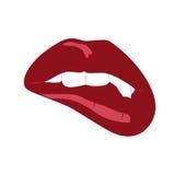 Öppnad mun med tänder Royaltyfria Bilder
