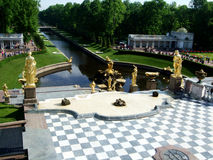 Öppning av de Peterhof springbrunnarna Guld- statyer arkivfoton