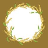Öra av designen för riscirkelram, växtvektor vektor illustrationer