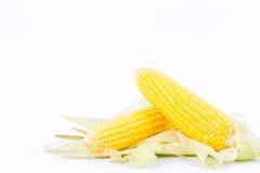 Örat av majs på majskolvkärnor eller korn av mogen havre på vit bakgrund konserverar den isolerade grönsaken Arkivbild