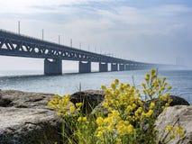 Öresund Bridge between Copenhagen and Malmö, Sweden, Europe. Öresund Bridge between Copenhagen and Malmö, world`s longest cable-stayed bridge royalty free stock images