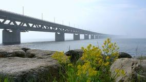 Öresund Bridge between Copenhagen and Malmö, Sweden, Europe. Öresund Bridge between Copenhagen and Malmö, world`s longest cable-stayed bridge stock video footage