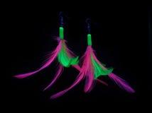 örhängefjäder Arkivbilder