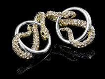 Örhängen för kvinnor - juvel Royaltyfria Bilder