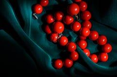 Örhängen och halsband för röd korall Royaltyfria Bilder