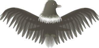 örn stock illustrationer