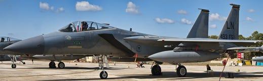 Örn F-15 Royaltyfri Foto