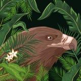 Örn i skogen vektor illustrationer