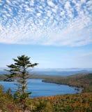 Örn Lake Royaltyfri Fotografi