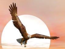 Örn vid solnedgång - 3D framför vektor illustrationer