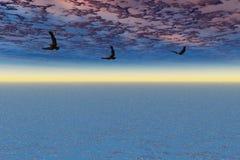 Örnar i flyg Royaltyfri Foto