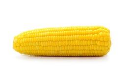 Öron av majs som isoleras på vit bakgrund Arkivfoton