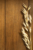 Öron av oaten på trä Arkivfoto