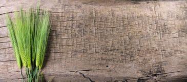 Öron av vete på en träbakgrund panorama Royaltyfri Foto