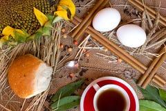 Öron av vete, te, kopp, solros Arkivfoton