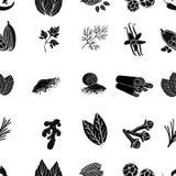 Ört- och kryddamodellsymboler i svart stil Den stora samlingen av ört- och kryddavektorsymbolet lagerför illustrationen vektor illustrationer