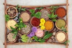 Ört- och kryddasmaktillsats Royaltyfria Foton