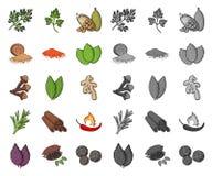 Ört och kryddatecknad film, mono symboler i den fastställda samlingen för design Olika sorter av smaktillsatsvektorsymbolet lager stock illustrationer