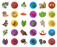 Ört och kryddatecknad film, plana symboler i den fastställda samlingen för design Olika sorter av smaktillsatsvektorsymbolet lage vektor illustrationer