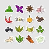 Ört- och kryddavektorklistermärkear stock illustrationer