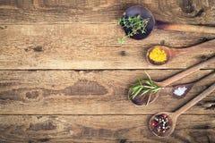 örtar för fjärdcardamonvitlök blad vanilj för kryddor för pepparrosmarinar salt Royaltyfri Fotografi