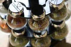 örtar för fjärdcardamonvitlök blad vanilj för kryddor för pepparrosmarinar salt Royaltyfri Foto