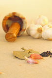 örtar för fjärdcardamonvitlök blad vanilj för kryddor för pepparrosmarinar salt Fotografering för Bildbyråer