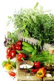 Örtar i asken och de nya grönsakerna Arkivfoton