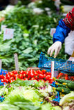 Örtar och grönsaker på marknaden Royaltyfri Foto