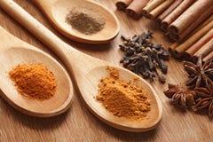 Örtar och kryddor Royaltyfri Fotografi