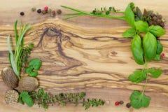 Örtar och kryddor Arkivfoto