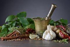 Örtar och kryddor på ett trä bordlägger Fotografering för Bildbyråer