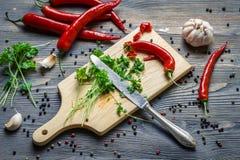 Örtar och kryddor som ingredienser för ett sunt mål Fotografering för Bildbyråer
